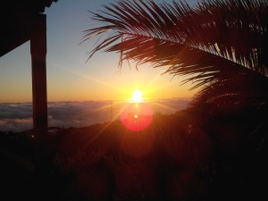 Wenn dich die Sonne wachkitzelt, hast Du Ostseitenbalkon